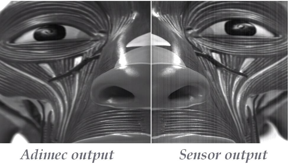 Adimec camera output compared to sensor output