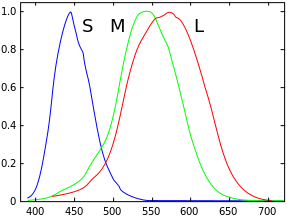 spectral response of human eye